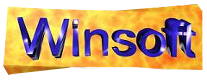 Logo Winsoft